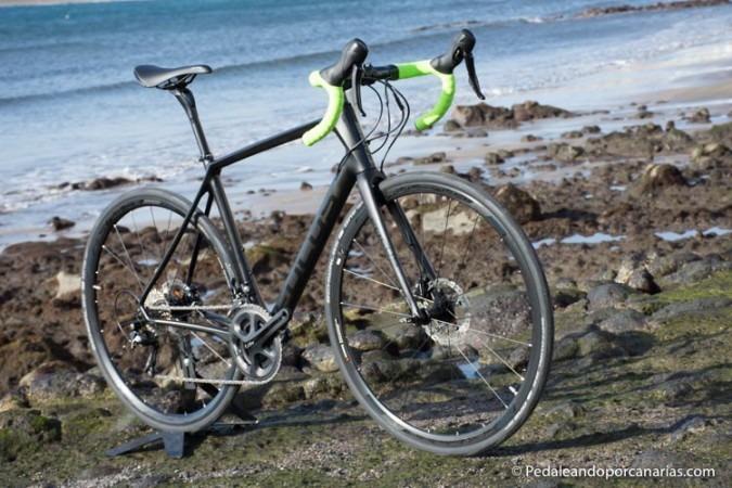 Focus Paralane 2016 Bike Shop In Tenerife